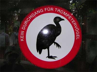 Kein Durchgang für Trompetervögel